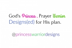 princesswarriordesigns meaning